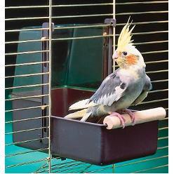 cage pour oiseaux canaris mandarins perruches. Black Bedroom Furniture Sets. Home Design Ideas