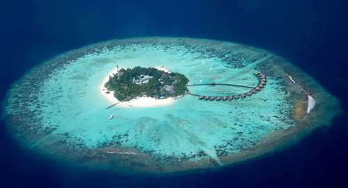 lile-maldive